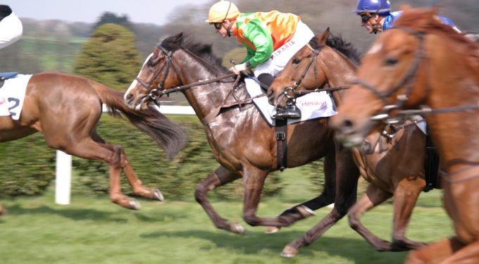 Pferderennen Rennpferde Jockey