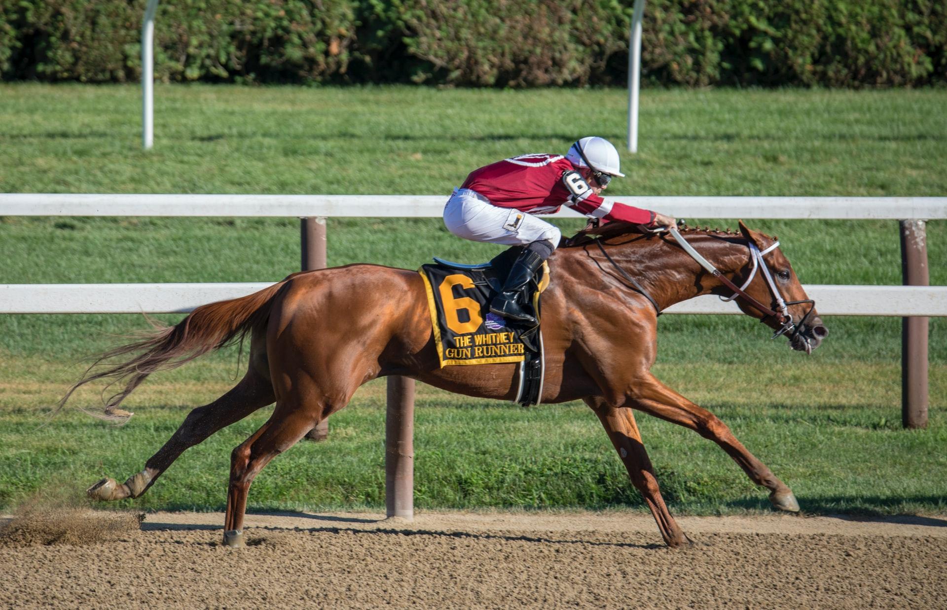 Nicht nur beim Rennpferd geht es um Glück: Pferde symbolisieren Macht und Wohlstand