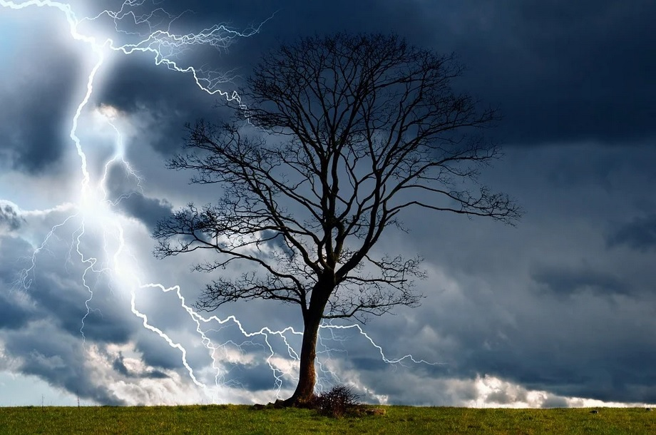Blitz Gewitter Baum Landschaft