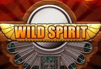 Wild spirit kostenlos spielen ohne anmeldung