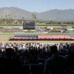Norco: USAs Pferdestadt setzt auf Ponywetten