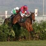 Neue Richtlinien für Pferderennen-Wetten in Großbritannien geplant