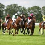Britische Buchmacher müssen Abgaben an Pferderenn-Branche zahlen