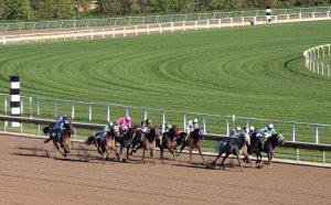 Sportwetten Lizenzen - geplante Änderungen am Glücksspielstaatsvertrag