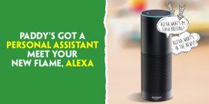 Alexa Feature von Paddy Power