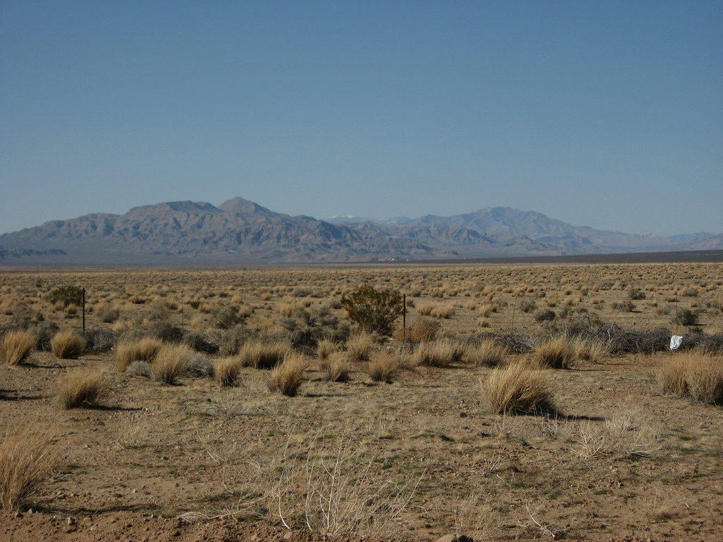 Wüste Nevadas bei Primm