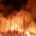 Casinodirektor spendet Pokergewinn an Ersthelfer bei kalifornischen Waldbränden