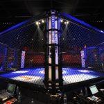 UFC: Al Iaquinta besiegt Kevin Lee