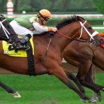 Trainer boykottieren Pferderennen: Sind die Preisgelder unfair niedrig?