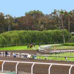 Santa Anita Park, Kalifornien: Warum starben 21 Rennpferde?