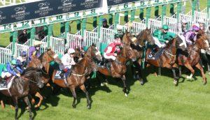 Pferderennen in Irland