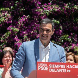 Pedro Sánchez, spanischer Ministerpräsident, PSOE