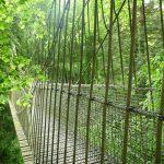 IBES 2020: Wetten auf das Dschungelcamp