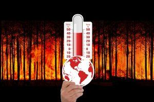 Waldbrand, Thermometer