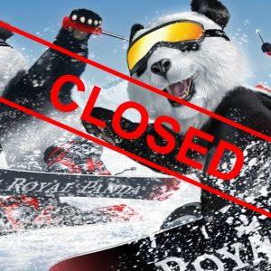 Panda Bären, Ski, Schnee, closed
