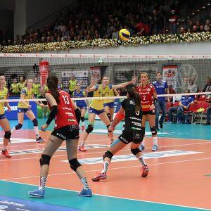 Spiel des Dresdner SC gegen SSC Palmberg Schwerin