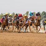Beim Saudi Cup-Pferderennen geht es heute um 20 Mio. US-Dollar