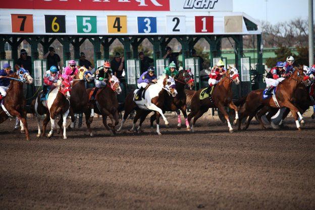 Pferde auf einer Rennbahn
