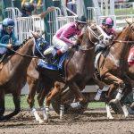 Räuber erbeuten 250.000 US-Dollar auf New Yorker Pferderennbahn