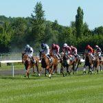 Doping-Ermittlungen gegen Star-Trainer im US-Pferderennsport