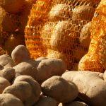 Britische Lottogewinnerin verschenkt Tausende Kartoffeln