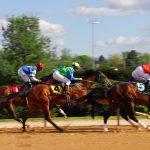 Glücklicher Spieler wettet 50 Cent auf Pferderennen und gewinnt 525.000 USD