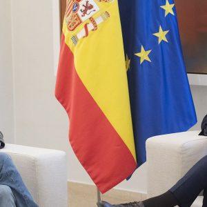 Pablo Iglesias, Pedro Sanchez, spanische Regierung