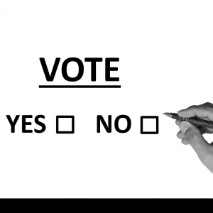 Ein Wahlzettel und eine Hand