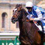 Wiederaufnahme von Pferderennen in Frankreich ab 11. Mai?