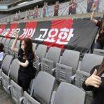 Sexpuppen im Stadion: Fußballclub FC Seoul entschuldigt sich für Fauxpas