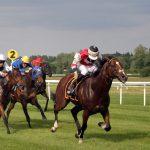 Pferdewetten in Frankreich: Rennen gehen in die erste Runde