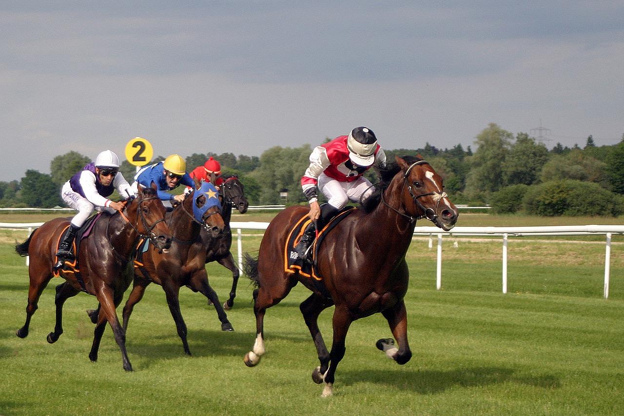 Pferderennen Frankreich ErgebniГџe