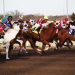 Pferderennen in Großbritannien könnten in Kürze wieder aufgenommen werden