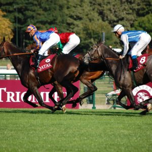 Rennpferde in Longchamp