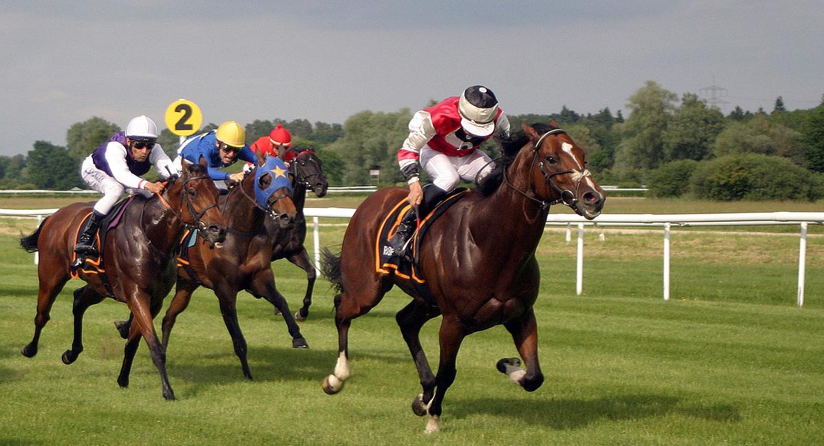 Pferderennbahn Englisch