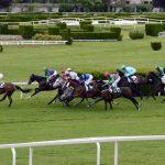9-Punkte-Plan zur Rettung des britischen Pferdesports