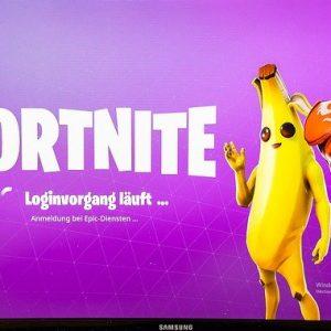 Fortnite, Fortnite auf dem PC
