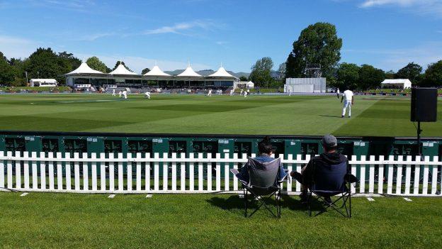 Cricket-Spieler auf dem Rasen