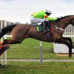 Wettbetrug im Pferderennsport? Auffällige Quoten und unerwarteter Sieger nach Rennen in England