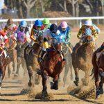 Ein Jahr nach Corona-Ausbruch: Pferderennen in Wuhan auch ohne Sportwetten gut besucht