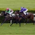 Britischer Pferderennsport: Brief warnt vor 60 Mio. GBP Verlusten durch Glücksspiel-Reform