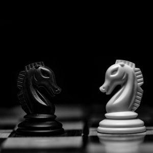 Schach Zwei Pferde