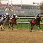 Doping-Skandal im Pferdesport? Kentucky Derby-Sieger positiv auf Steroid getestet
