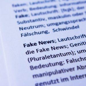 Fake News Wörterbucheintrag