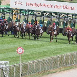 Henkel-Preis der Diana Pferde Start