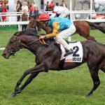 Pferderennen: Hamburger Derby-Meeting 2021 ein voller Erfolg