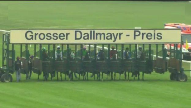 Grosser Dallmayr Preis Bayerisches Zuchtrennen Rennpferde