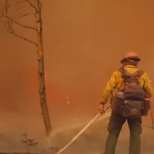 Waldbrand, Feuerwehrmann
